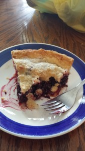 Mom's Mulberry Pie